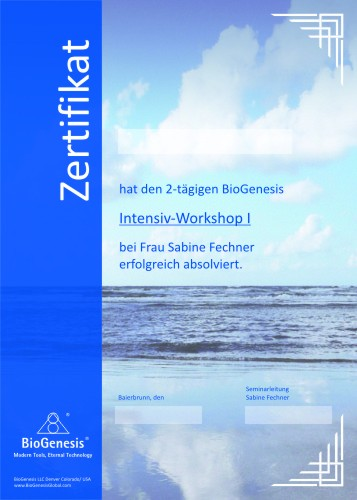 BioGenesis Lichtwerkzeuge Intensiv-Workshop I (Practitioner) in 2015